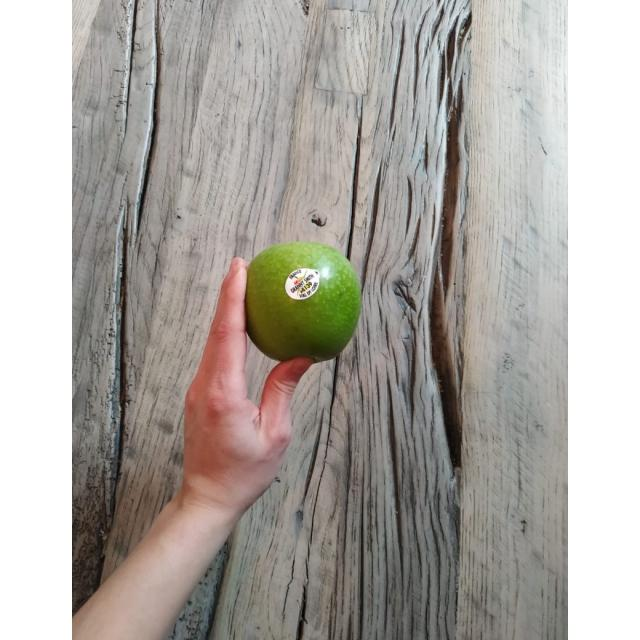 Apple-Granny Smith (1)
